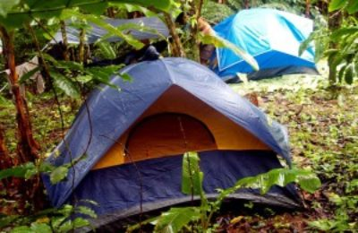 Phong Nha Jungle Trek & Wildlife 1D1N