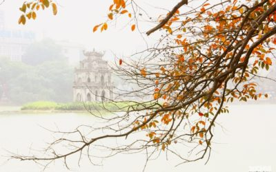 Phong Nha to Ha Noi by private car